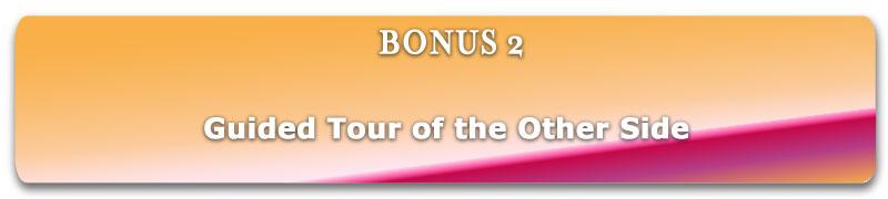item_bg_bonus2